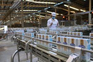 Vinamilk liên tiếp thuộc top công ty kinh doanh hiệu quả nhất Việt Nam