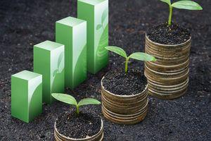 Nhận định thị trường phiên giao dịch chứng khoán ngày 6/7: Giải ngân ngắn hạn có thể được cân nhắc