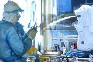 Singapore thành vùng dịch Covid-19 lớn nhất Đông Nam Á