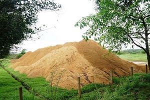 """""""Móc"""" hàng trăm khối cát tại nơi sắp làm kè chống sạt lở"""