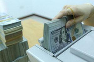 Lãi suất liên ngân hàng giảm mạnh có thể gây áp lực lên tỷ giá