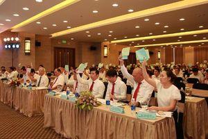 ĐHCĐ DII: doanh thu hợp nhất đạt 1.716 tỷ đồng