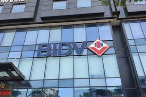 BIDV chia cổ tức bằng tiền mặt tỷ lệ 8%