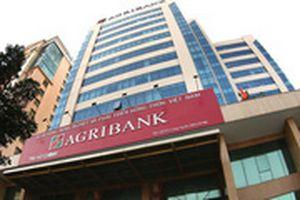 Agribank lãi ròng 5.414 tỉ đồng nửa đầu năm, nợ xấu tăng gần 40%