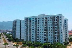 Bình Định: Công ty Phú Mỹ - Quy Nhơn làm chủ đầu tư dự án NOXH tại phường Đống Đa