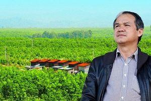 Ông Trần Bá Dương trở thành Chủ tịch HAGL Agrico