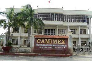 Camimex chào bán riêng lẻ 30 triệu cổ phiếu giá 11.700 đồng/cp