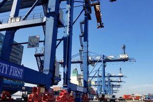 Tân Cảng (TCL) trả cổ tức tiền mặt tỷ lệ 50%