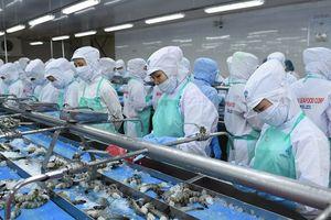 Thực phẩm Sao Ta: Sản lượng tôm chế biến đạt 2.268