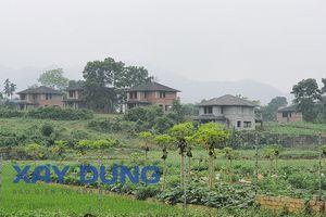 Ba Vì (Hà Nội): Hàng loạt vi phạm trong quản lý đất đai, trật tự xây dựng tại xã Yên Bài