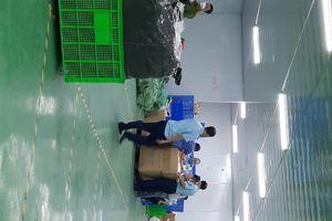 Hà Nội: Thu giữ gần 21.000 chiếc khẩu trang giả nhãn hiệu 3M