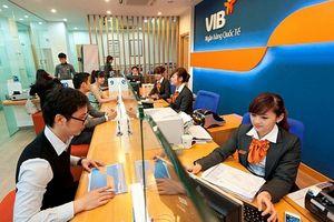 VIB: Tăng trưởng cao trong bối cảnh kinh tế khó khăn