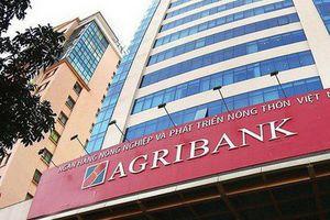Vì sao Agribank lại được 'ưu ái' về tỷ lệ dự trữ bắt buộc, Vietcombank, VietinBank và BIDV có cửa giảm?