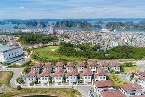 Phú Thọ: Liên danh Sông Hồng Thủ đô - Xây dựng Tự Lập được lựa chọn thực hiện Khu đô thị gần 4.700 tỷ đồng